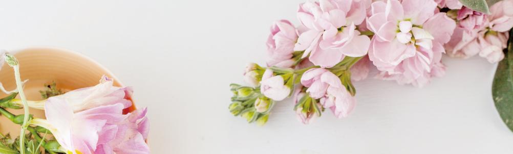 ピンク色の花の画像